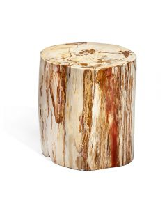Myles Petrified Wood Side Table - Short